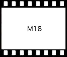 Mamiya M18