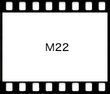 Mamiya M22