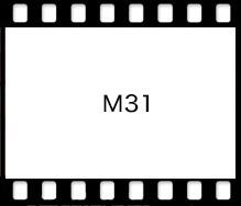 Mamiya M31