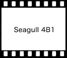 SEAGULL Seagull 4B1