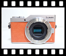 Panasonic LUMIX DC-GF9W